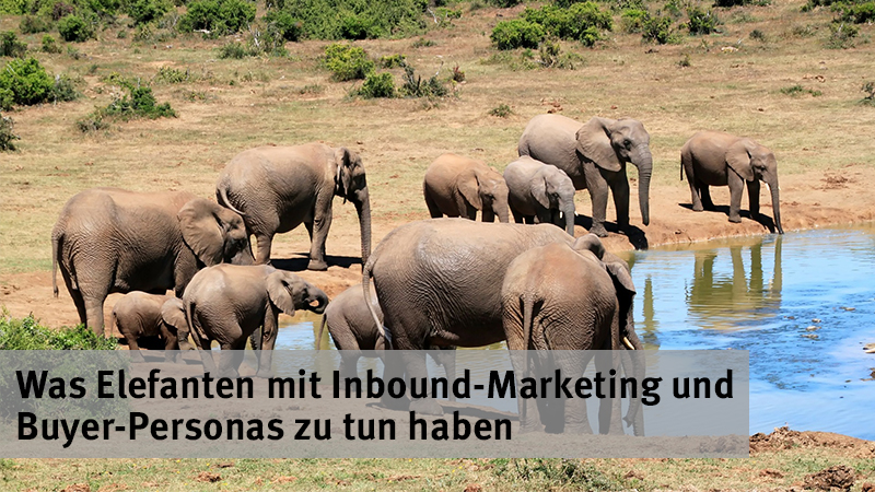 Inbound Marketing Wasserloch-Strategie
