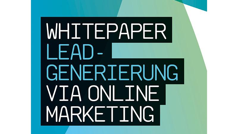 TrafficGenerator Whitepaper Leadgenerierung via Online Marketing